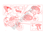 ART KIT para Ducati Monster 1100 EVO 2011